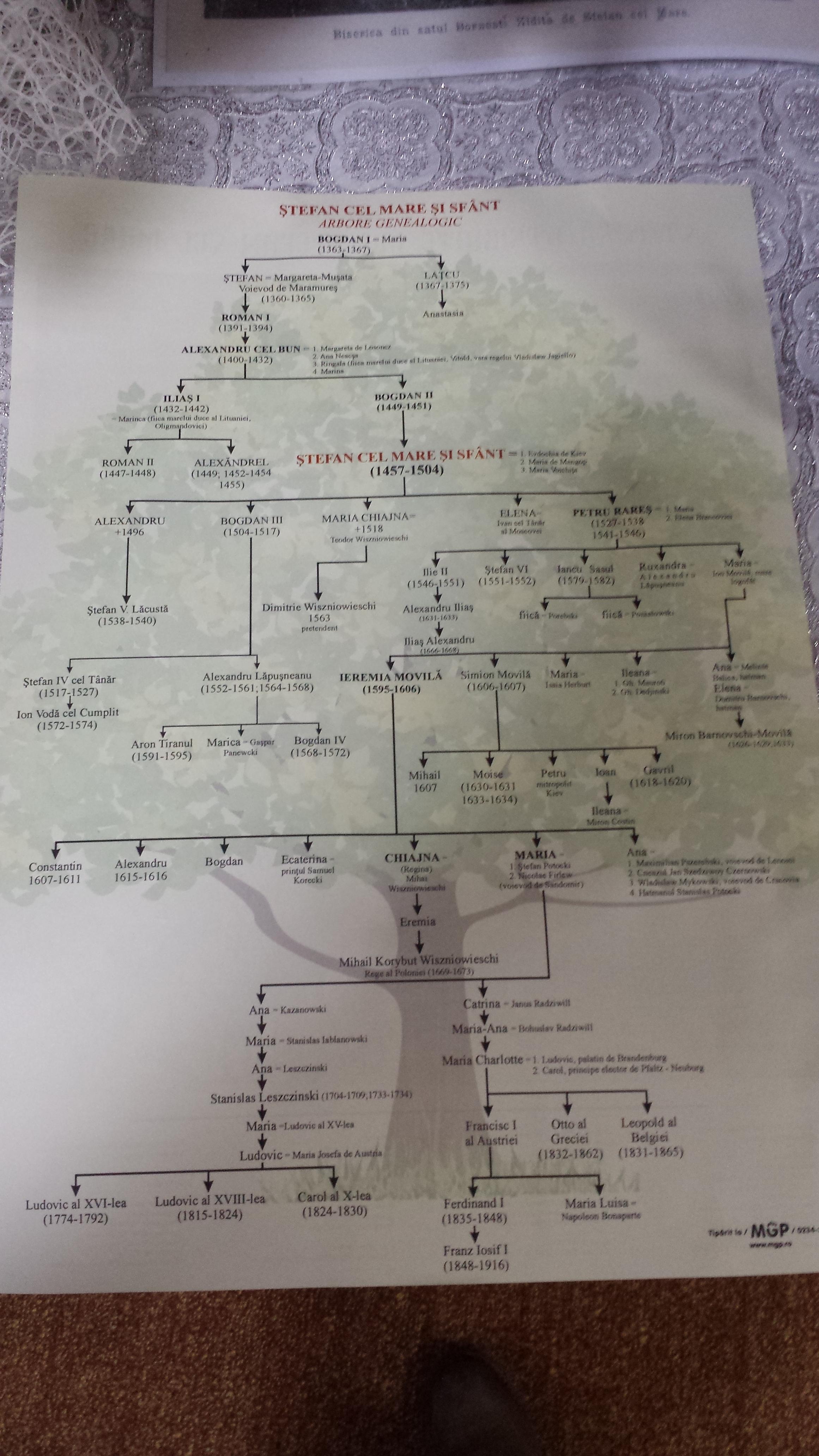 Arborele Genealogic - Ştefan cel Mare. Complexul Muzeal Borzeşti.