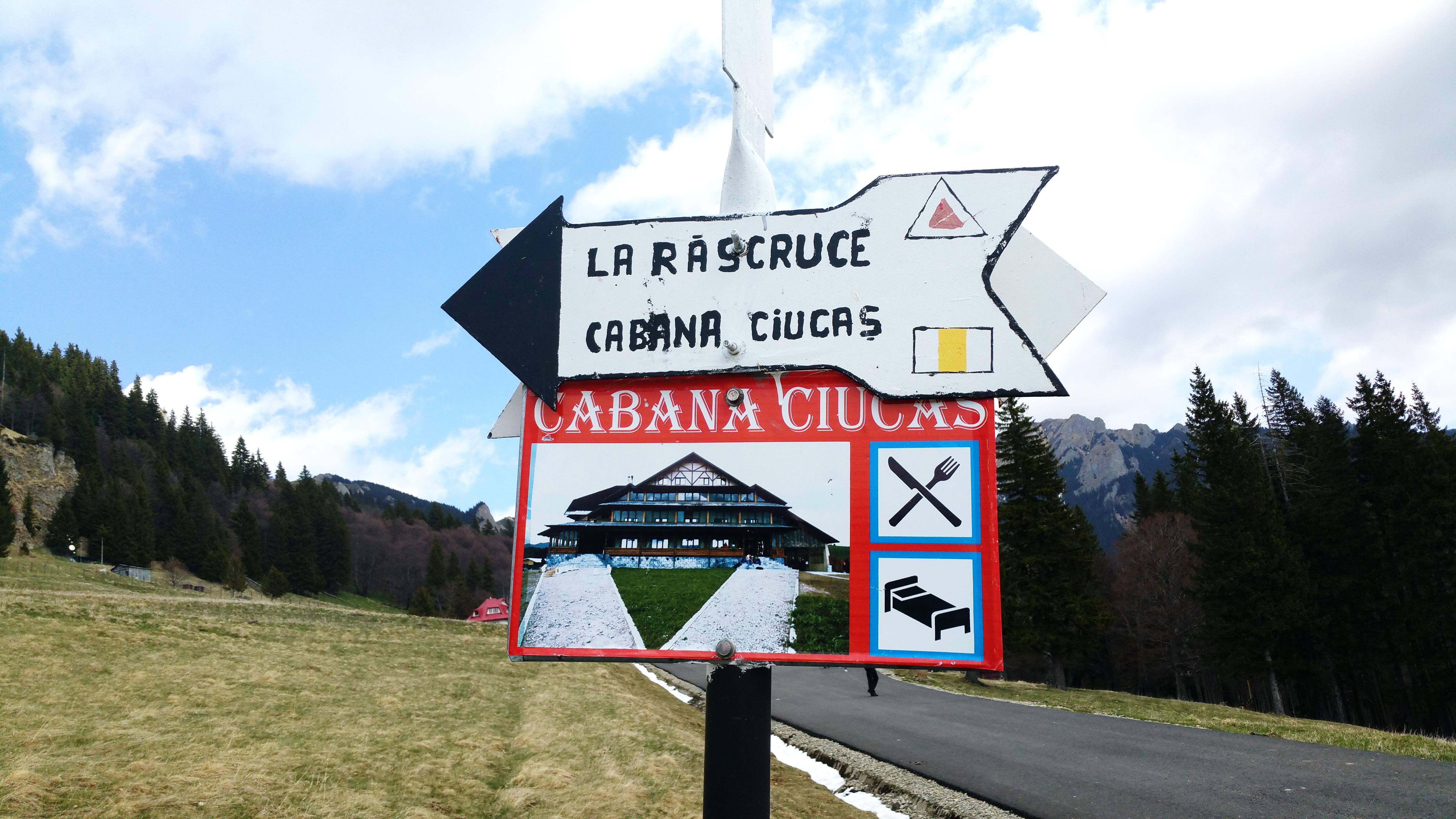 Drumul de urmat către Cabana Ciucaş