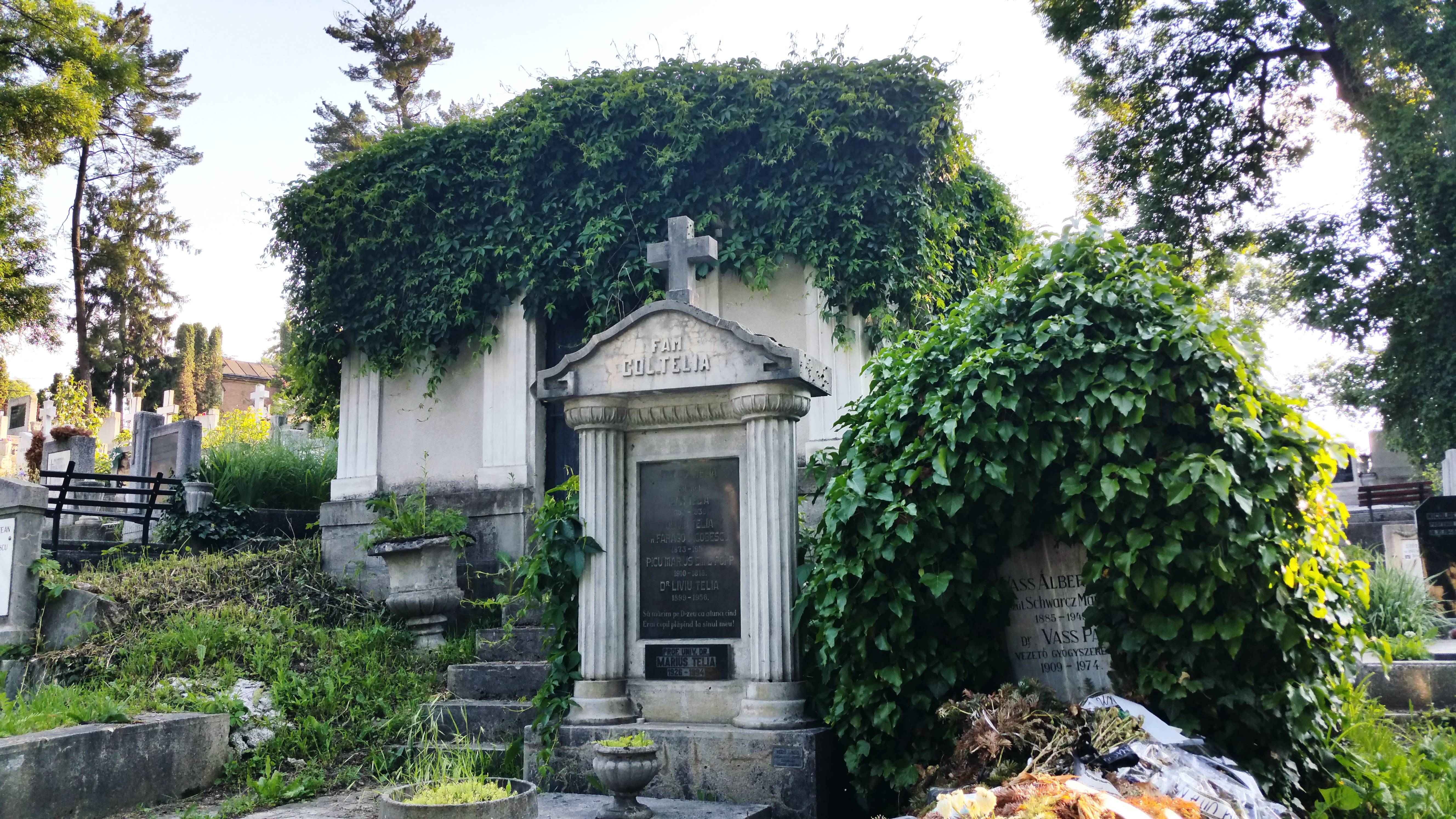 Monument funerar din Cimitirul Hajongrad