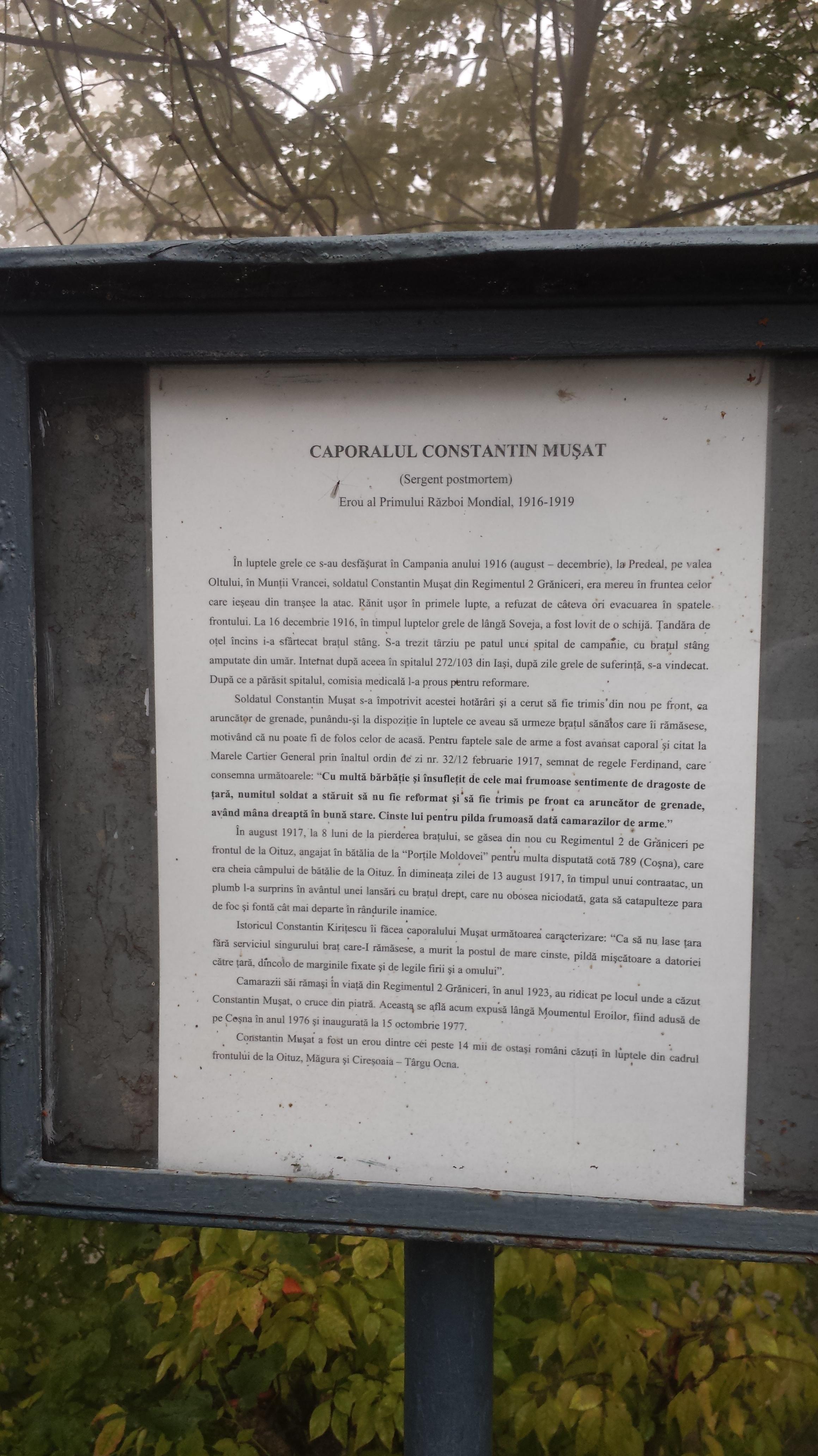 Informaţii Constantin Muşat