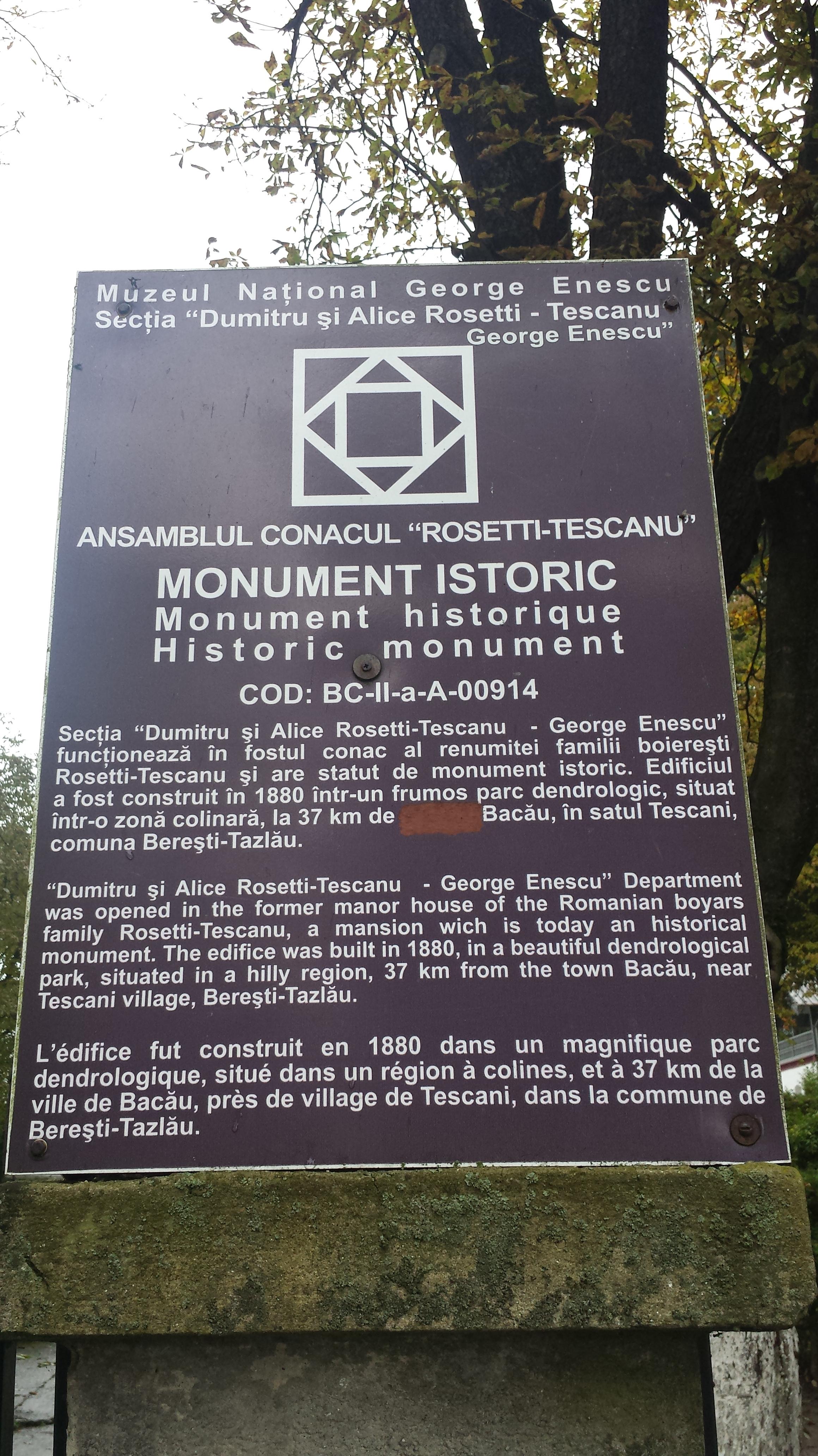 Casa Tescanu-Rosetti - informaţii