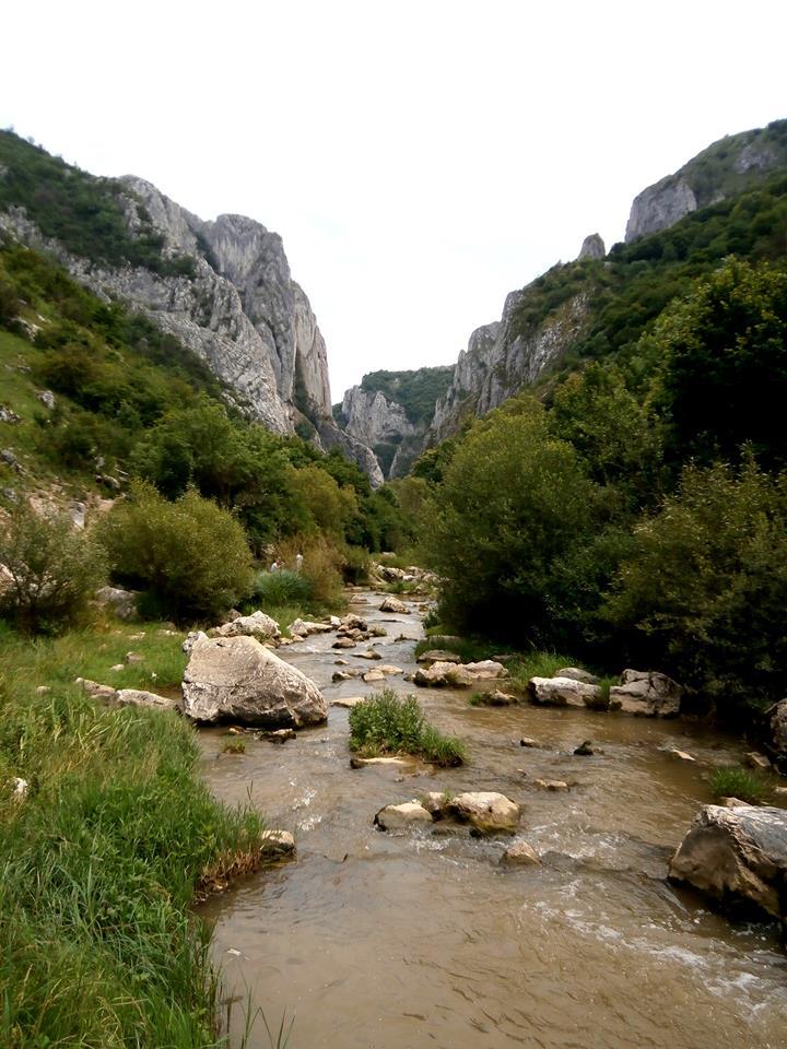 Sfărşitul traseului. O poiană largă, un râu, un loc perfect pentru un picnic.