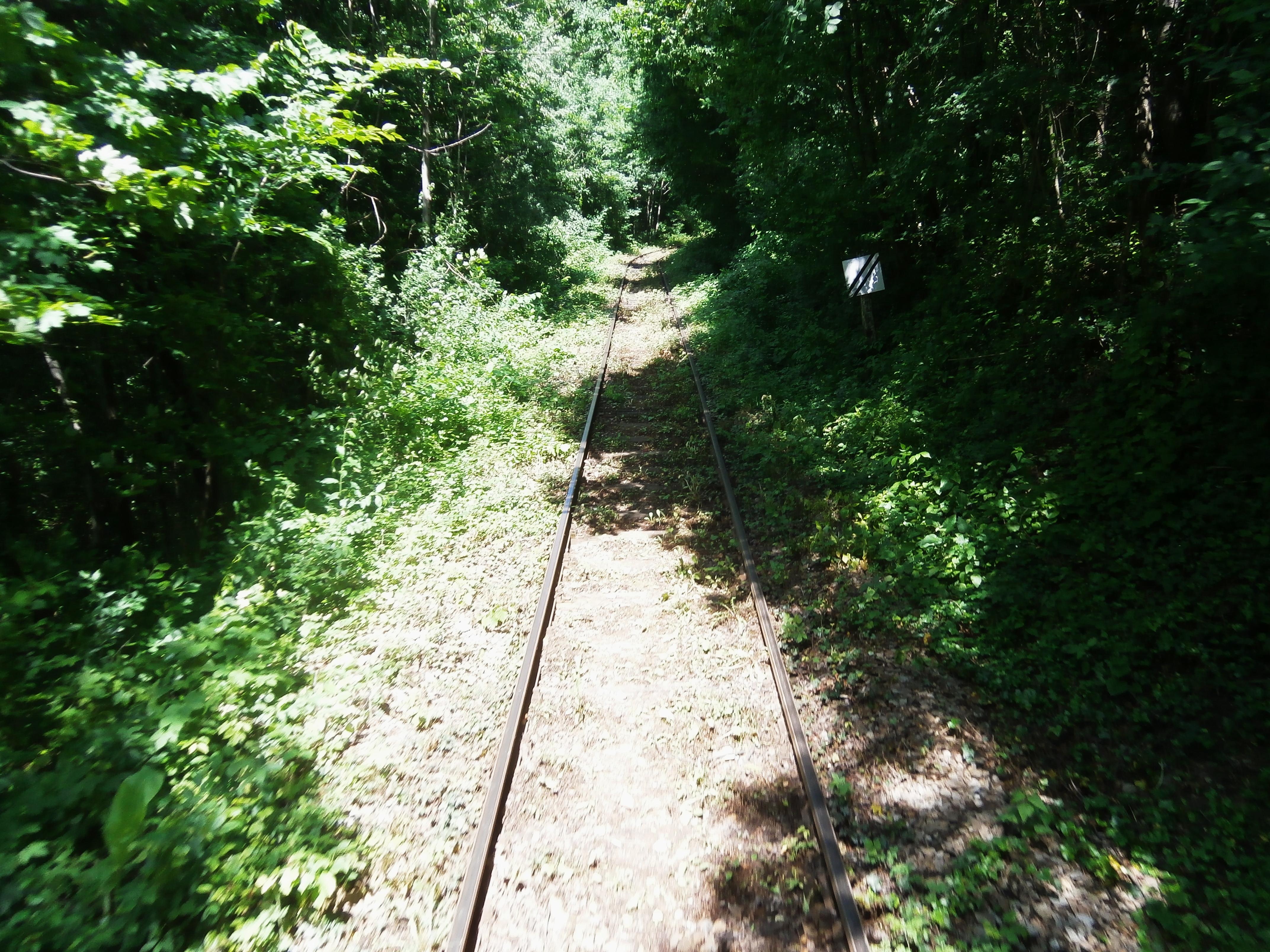 Calea ferată Oraviţa - Anina