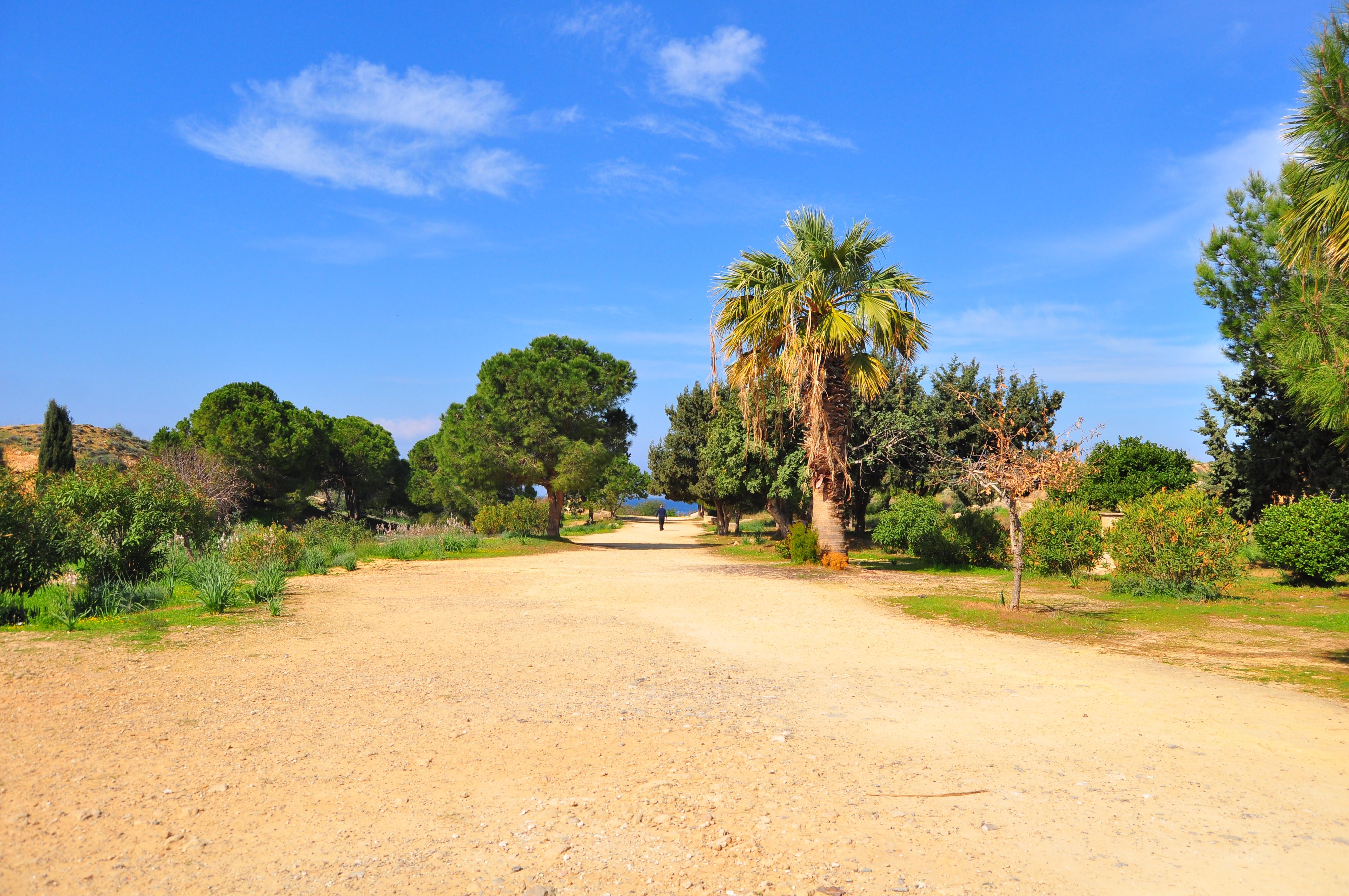Mormintele Regilor, Cipru