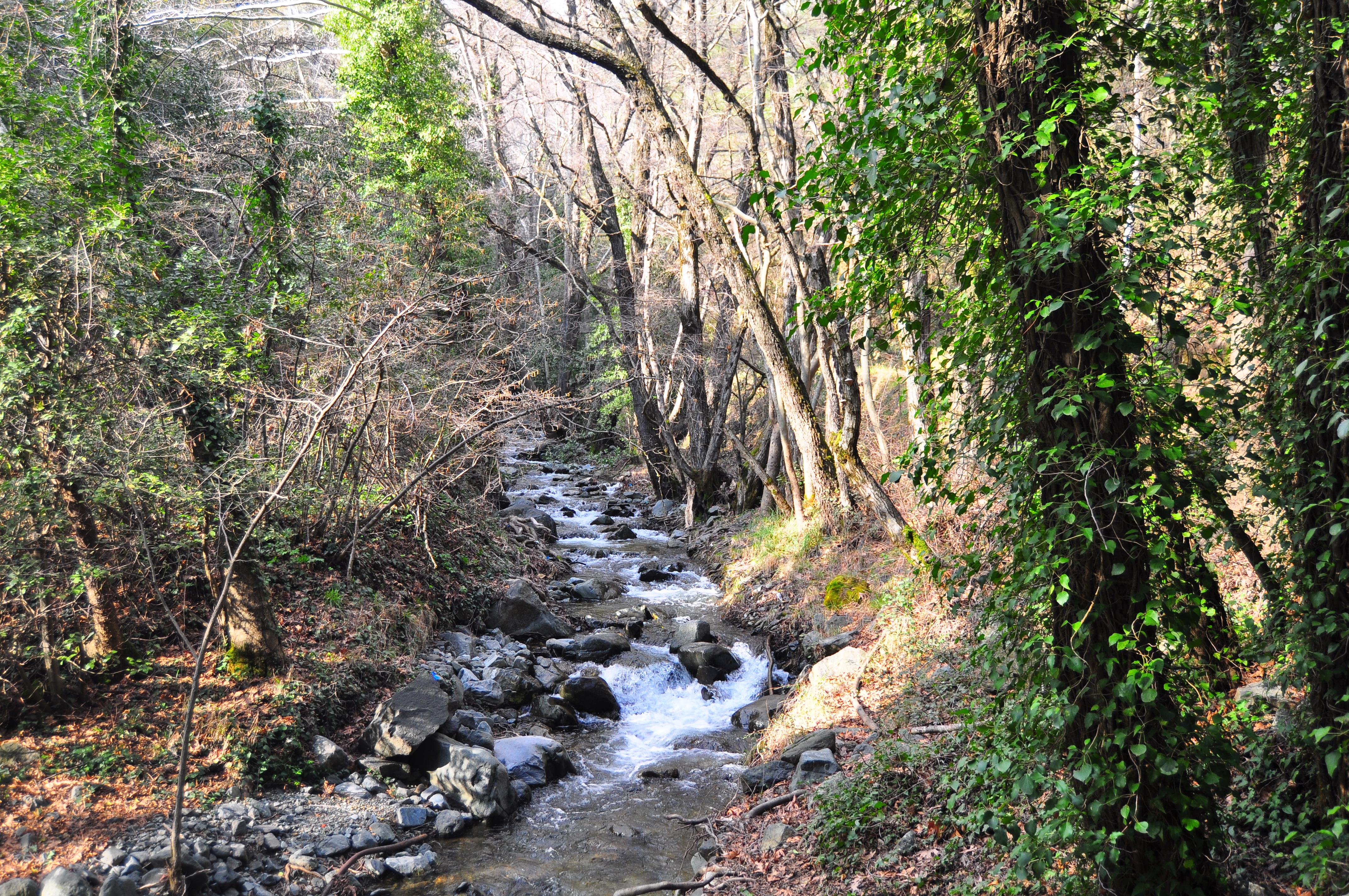 Râul de unde se formează Cascada Millomeris