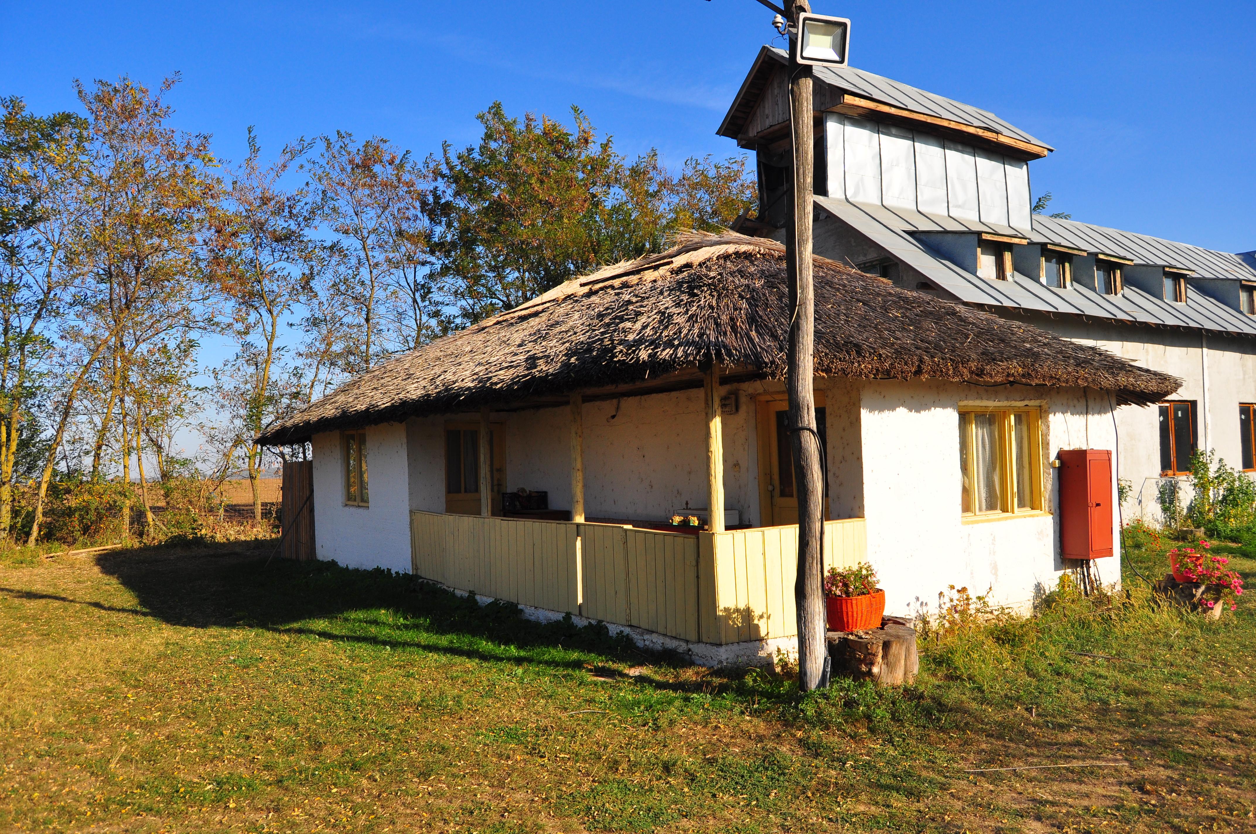 Mănăstirea Delta Neajlovului