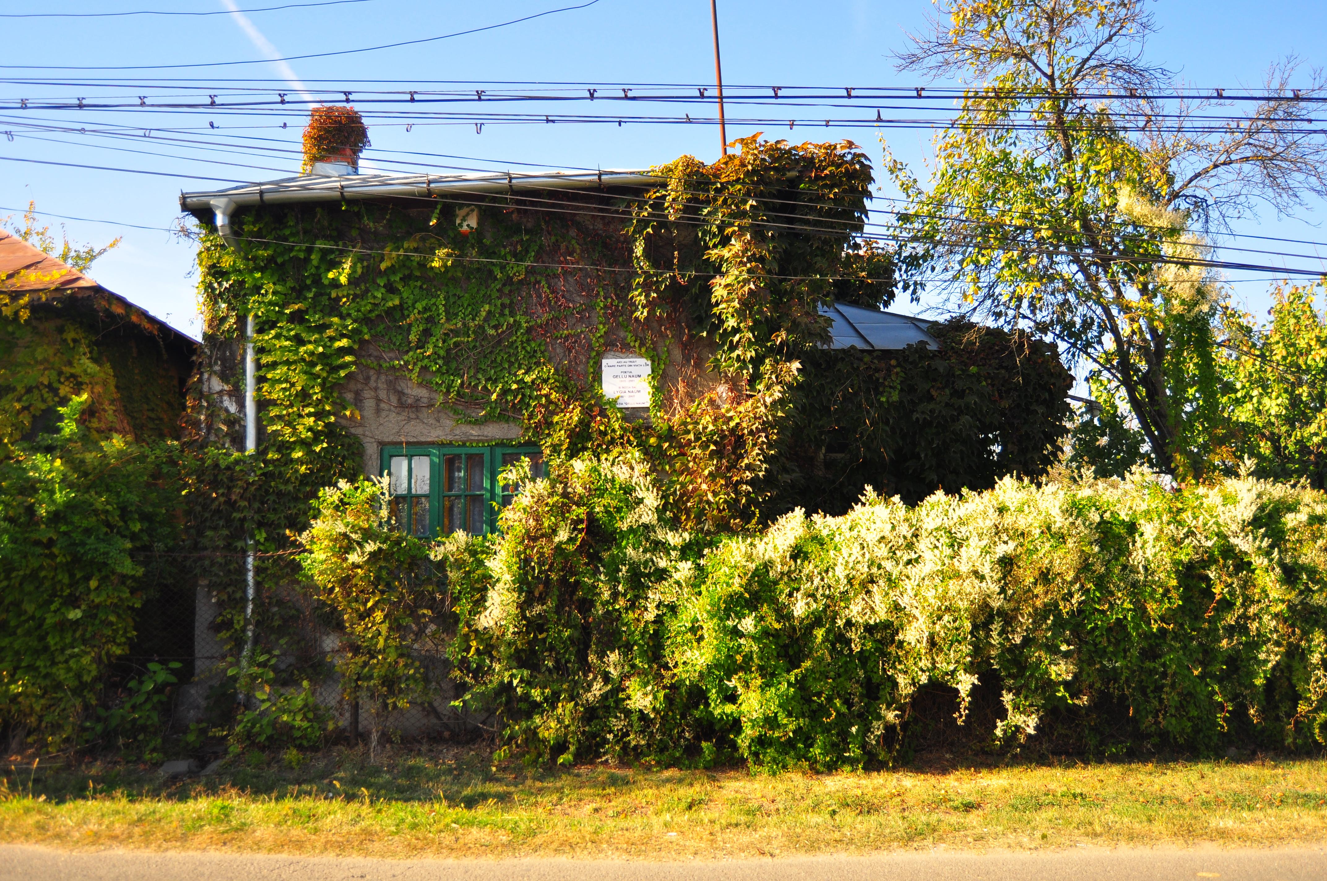 Casa Gellu Naum din Comana