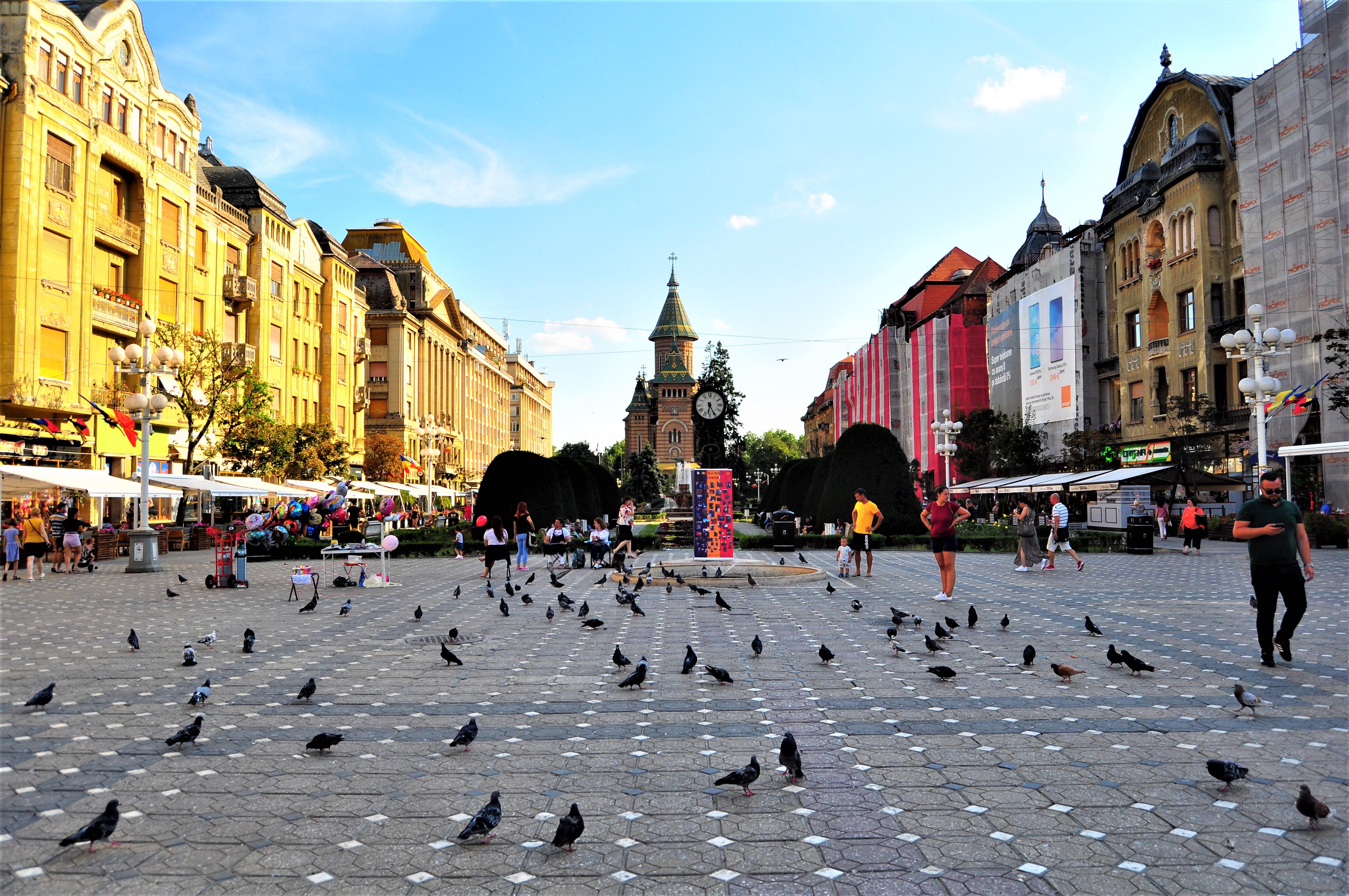Piața Victoriei, Timișoara. În depărtare se vede Catedrala Mitropolitană din oraș.